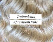 tratamiento oribe zaragoza premium oribe peinado eva pellejero